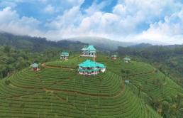 Tea Villa